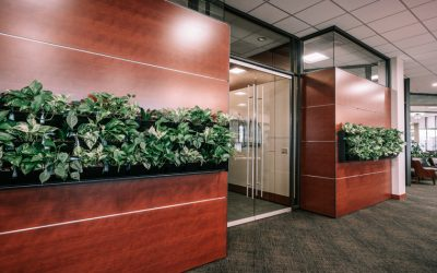 Bell Bank invests in DIRTT